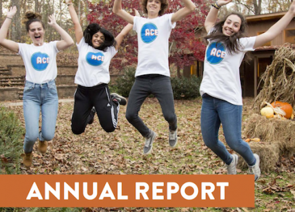 You Made this happen- ACE annual report feat