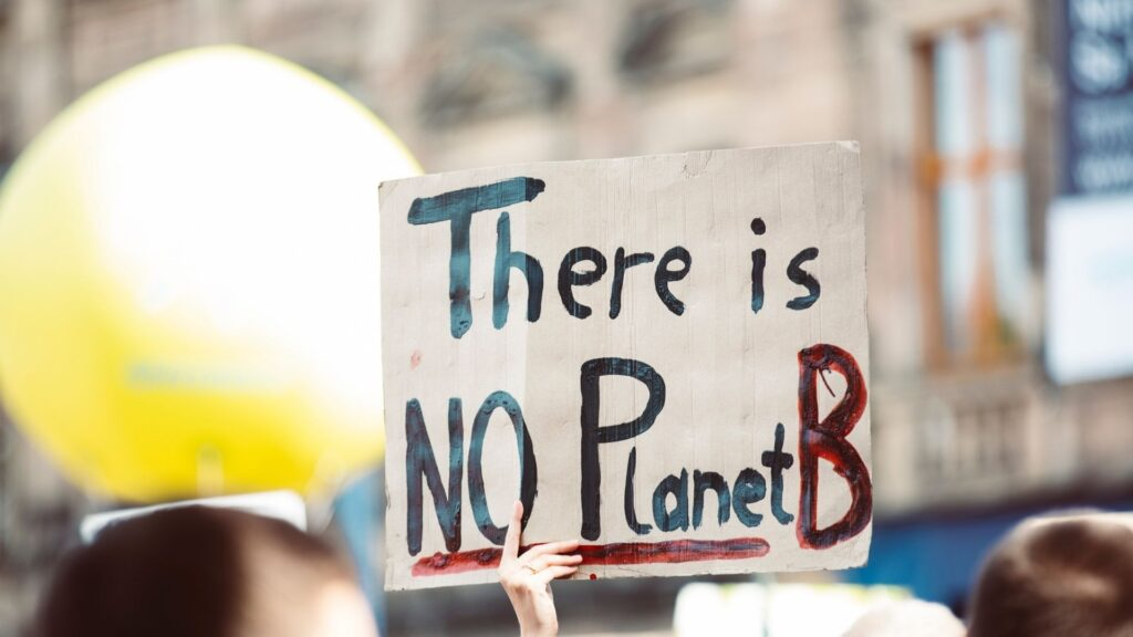 """Image of a protester holding up a placard that reads """"There is NO Planet B"""""""